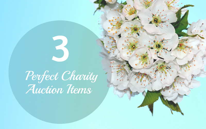 3 Perfect Charity Auction Items